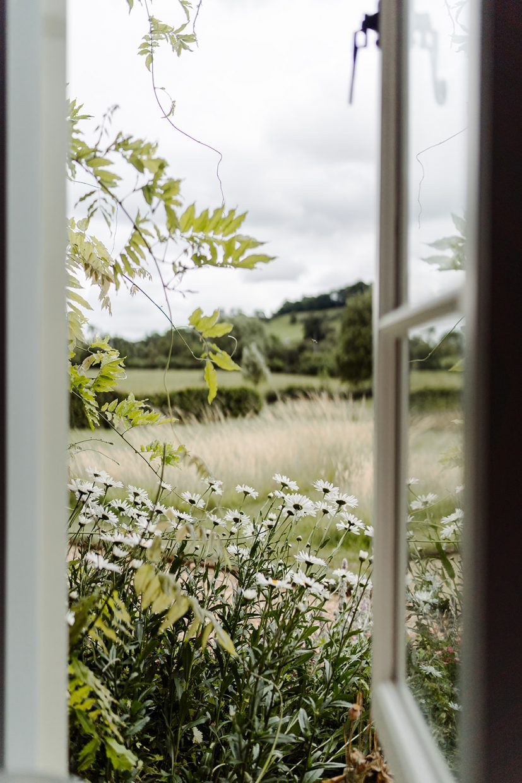 garden view at primrose hill farm