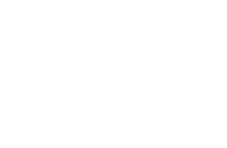 Chloe Ely Photography